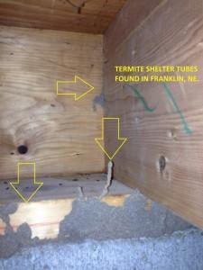 Termites Franklin NE